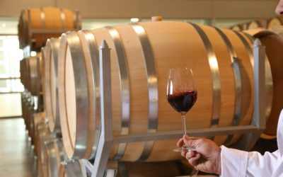 Cómo catar un vino: 3 fases para hacerlo correctamente sin ser experto